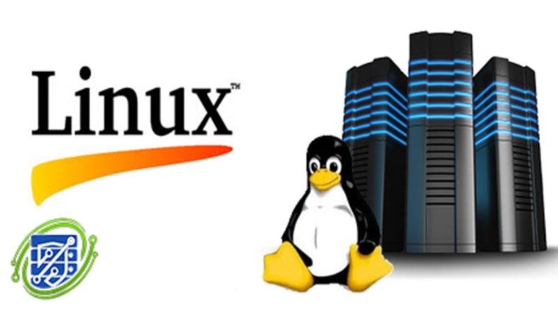 هاست لینوکس چیست؟ مزایا و خرید هاست لینوکس